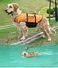 Оранжевый свет вес собаку жизни куртка плавательный жилет