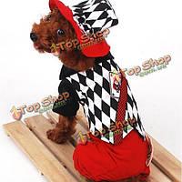 Хэллоуин маг стиль покер узор планки любимчика одежды собаки
