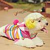Котенок на собаку свитер вязаный мягкий цветной полосой свитер с капюшоном