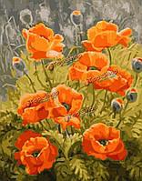 Номера комплект для поделок картины маслом бескаркасных картина цветок мака рисунок декора стен подарок 40x50cm, фото 1