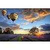 Поделки цифровой живописи маслом картина маслом на номера комплектов горячий воздушный шар лаванды домашнего декора стены 40x50cm