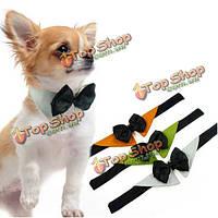 Собаки любимчика регулируемые галстук-бабочка воротник свадебный смокинг модные платье галстук