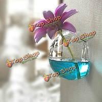 Настенный цветок стекло ваза гидропонных установках контейнер