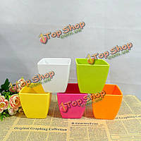 Пластиковый квадратный керамический цвет вазона сад суккулентных растений цветочный горшок