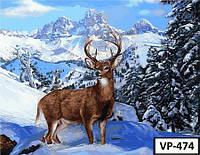 Картина на холсте по номерам VP474 40x50см