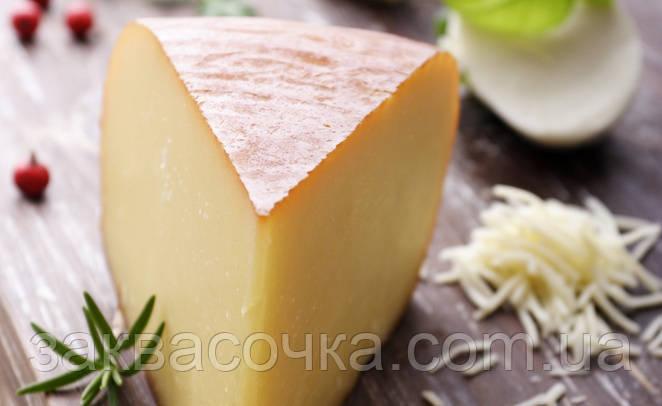 Закваска+фермент для сыра МОНТАЗИО