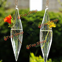 Olive Shape Glass Vase Flower Plant Water Container Home Wedding Decor