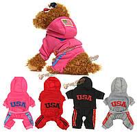 Животное щенка собака зимняя одежда теплая куртка пальто одежды одежды одежды собаки Hoodie свитер костюмы