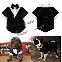 Кота собаки любимчика одежды щенка галстук рубашка свадебный костюм одежда смокинг костюм рубашка с воротничком комбинезон