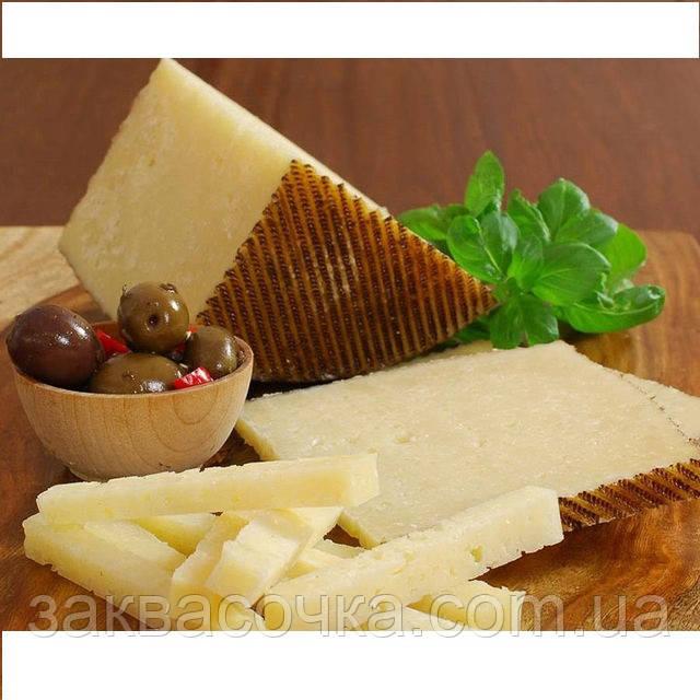 Закваска+фермент для сыра МАНЧЕГО