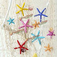 7шт 5.5см средиземноморском стиле 1шт красочные мини-морская звезда орнамент комнатным корабля домашнего декора сада
