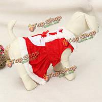 Животное щенок собаки новогодний костюм пальто одежда юбка платье
