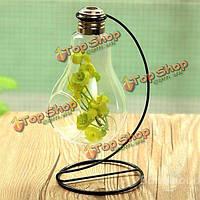 Форма лампы стеклянная ваза микро-ландшафта ЭКО бутылка с держателем