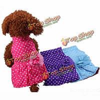 Собаки любимчика сладкий горошек платья щенок цветок кружева лук хлопок теплые юбка