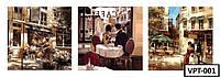 ТРИПТИХ Картины по номерам на холсте VPT-001  150х50см