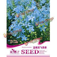 30шт синий дельфиниум семена семена цветов цветник растений