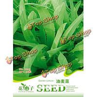 50шт семена листьев салата сада Sativa овощи завод балкон Lactuca