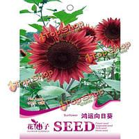 15шт DIY подсолнечника семена цветов сад посадка