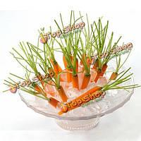 30шт типа мини-семена палец морковь редис палец