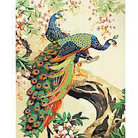 Павлин цифровая картина маслом картина маслом поделок по номерам комплекты бескаркасной холст домашнего декора стены 40x50cm