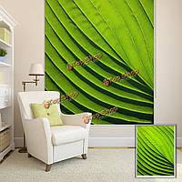 Вол зеленый лист декор стен занавес окна рольставни печати картина рольставни фон