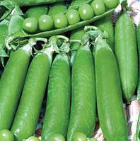 Весовые семена сахарного гороха Пегас  ( Очень урожайный и востребован на рынке)
