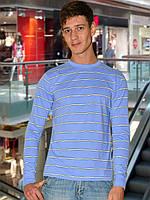 Мужская футболка (кофта) (Голубой)