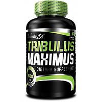 Трибулус TRIBULUS MAXIMUS 1500mg 90 таблеток