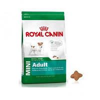 Royal Canin (Роял Канин) Mini Adult