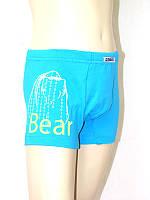 Детские трусы-шорты для мальчика Белый медведь р.34(128-134см)