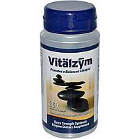 World Nutrition Inc., Vitalzym, вегетарианская формула, 360 гелевых капсул