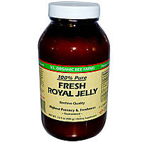 Y.S. Eco Bee Farms, Fresh Royal Jelly, 100% Pure, 16.9 oz (480 g) (Ice)