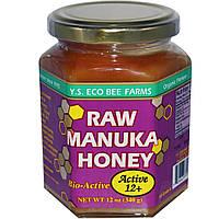Y.S. Eco Bee Farms, Raw Manuka Honey, Active 12+, 12 oz (340 g)