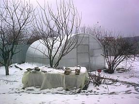 Зимние теплицы 5