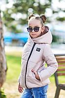 Детская курточка осень/зима с капюшоном для девочки MOSCHINO
