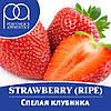 "Ароматизатор TPA (TFA) ""Strawberry (Ripe)"" 5мл"