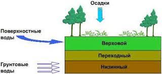 торф, продажа торфа, верховой торф, переходной торф, торф купить, торф в Украине
