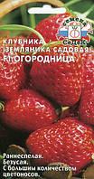 Семена клубники  (земляники садовой) Огородница F1 15 семян Седек