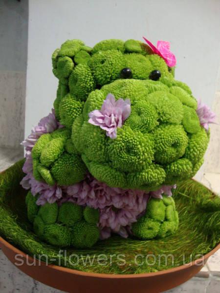 Бегемотик з живих хризантем