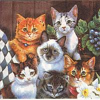 Декупажные салфетки котята 118