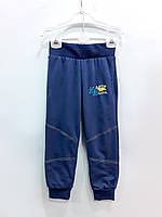 Трикотажные штаны Синие, интерлок