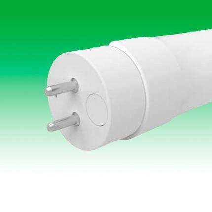 Светодиодная лампа LED 9W 4000K G13 ELECTRUM LT-48 (A-LT-0420), фото 2