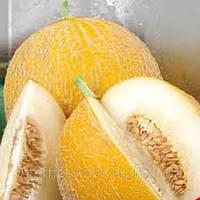 Семена дыни Леся (весовые от производителя)