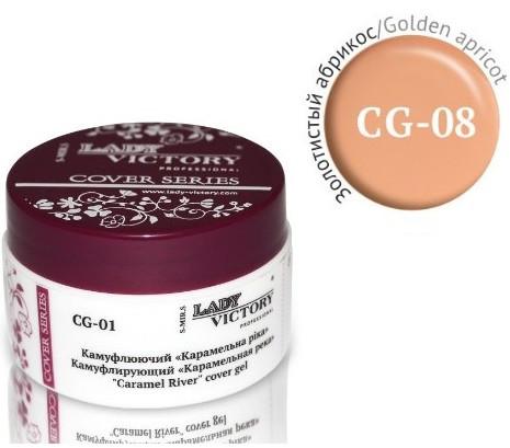 Камуфлирующий гель цвет золотистый абрикос Lady Victory 14g LDV CG-08 /57-2
