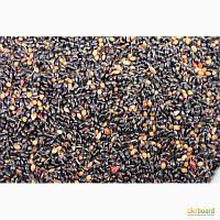 Семена суданки Днепровская 5 (черная)