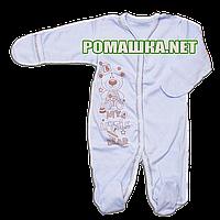 Человечек для новорожденного р. 56 демисезонный ткань ИНТЕРЛОК 100% хлопок ТМ Виктория 3145 Голубой1