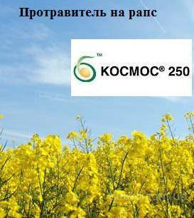 Протравитель  Космос 250 т.к.с.