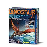 Раскопки динозавров. Птерозавр