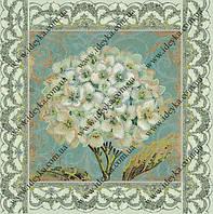 Вышивка схема Белая герань