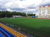 Спортивная искусственная трава/Покрытие для футбольного поля/покрытие для теннисного корта